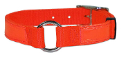 Bravo Reflective Dog Collar 1 inch