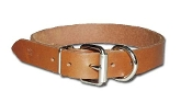 RIC D Ring Leather Collar 1 inch