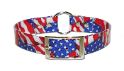 Stars & Stripes SunGlo Dog Collar