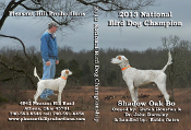 2013 National Champion Shadow Oak Bo (DVD)