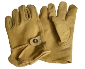 Winfield Riding Gloves