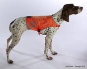 Ultra Paw Orange Safety Vest