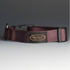 Clearance Sale - Bootlegger Collar